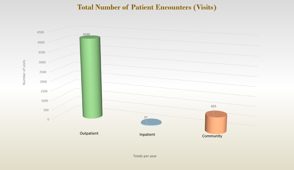 Total Number of Patient Encounters (Visits)